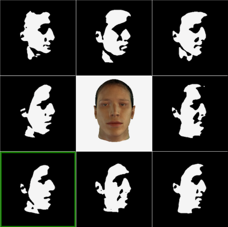 Face recognition via inference in a causal generative model